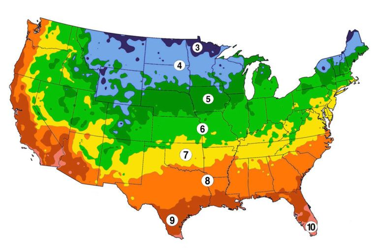 A map showing the frost dates for different regions across the US